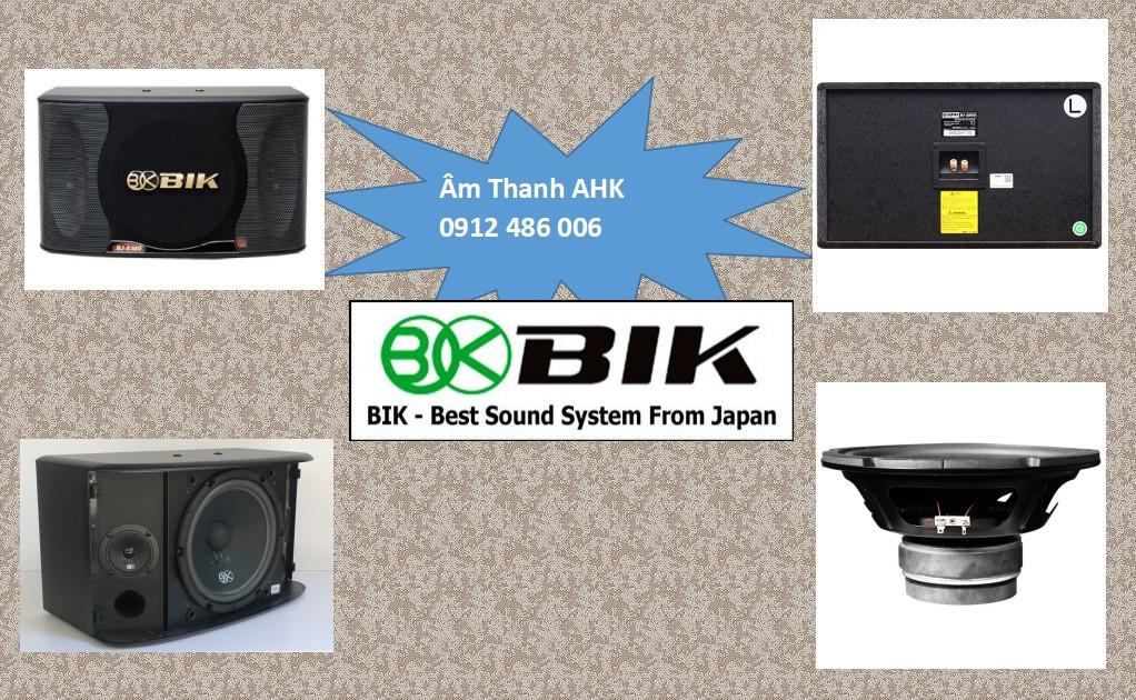 Loa BIK BJ S100