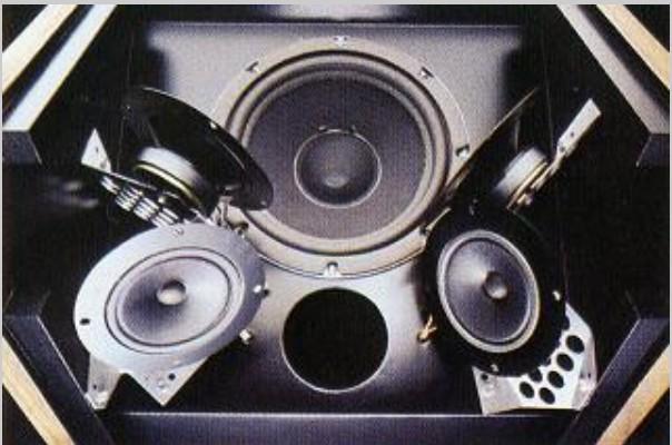 Loa Bose 601