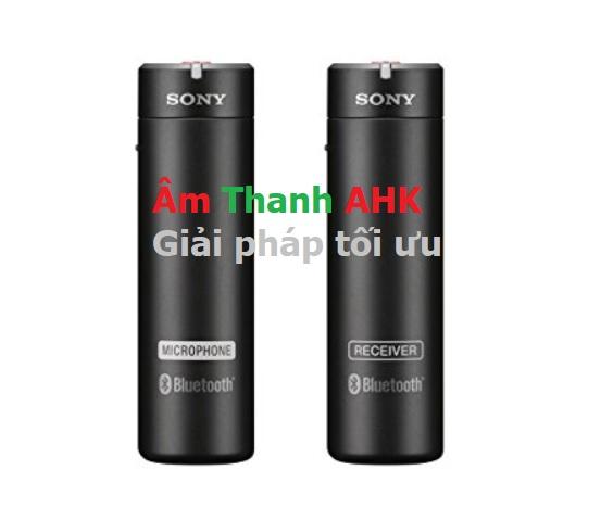 Sony ECMAW4